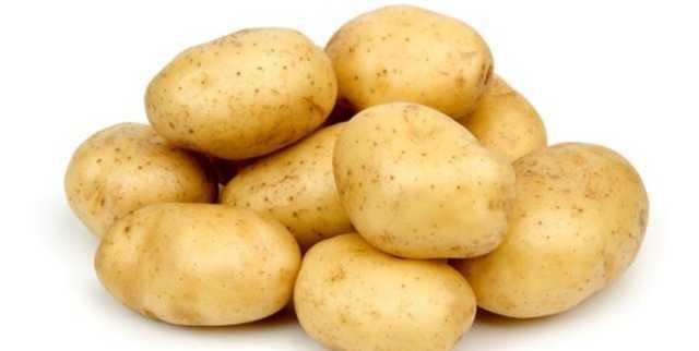 رفع ممنوعیت صادرات سیبزمینی به عراق