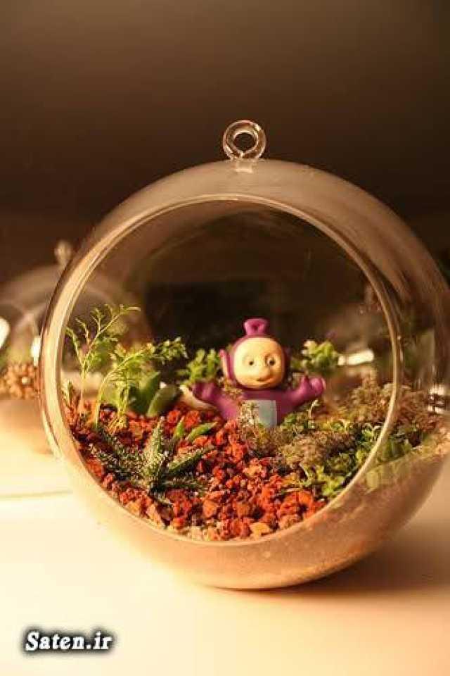 آموزش ساخت باغ شیشه ای (تراریوم) زیبا با انواع گیاهان +عکس