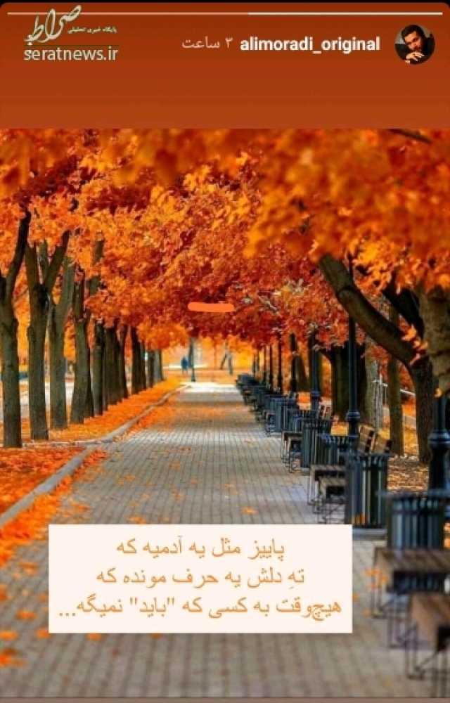 عکس/ حال و هوای پاییزی آقای مجری