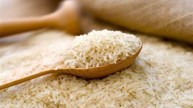 مخالفت وزارت جهاد با حذف دوره ممنوعیت واردات برنج