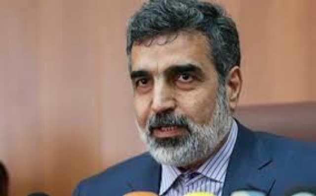 سازمان انرژی اتمی: اورانیوم غنی شده ایران به ۳۷۰ کیلو رسید