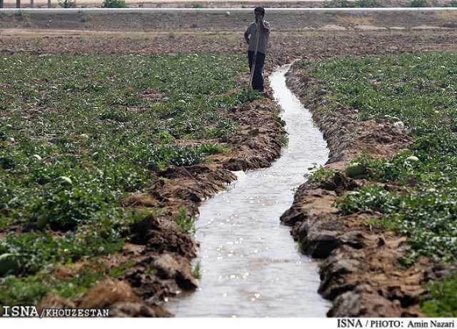 تصمیم واگذاری توزیع آب به کشاورزان خوزستانی به کجا رسید؟
