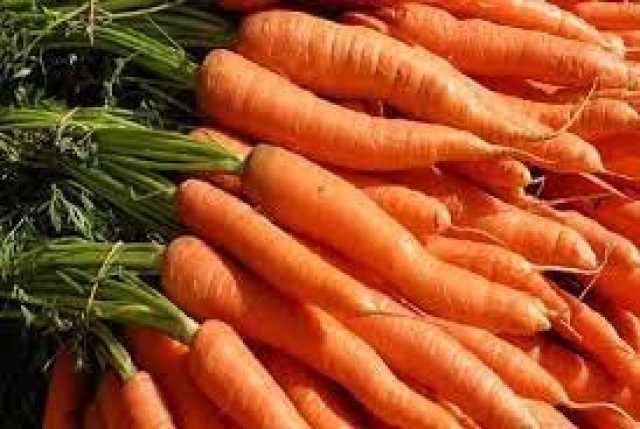 کرونا هویج را هم گران کرد