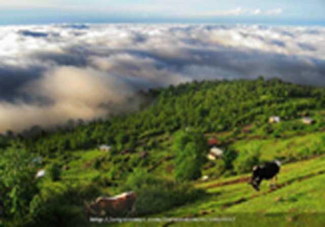 ادامه گرمای هوا در مازندران