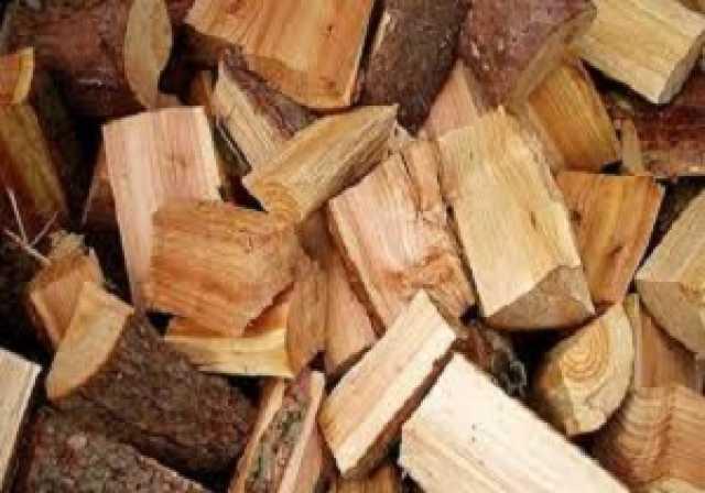 فعالیت ۷۰۰ واحد رسمی مجوزدار چوب در تهران/ تولید نئوپان در کشور به مرحله خودکفایی رسیده است