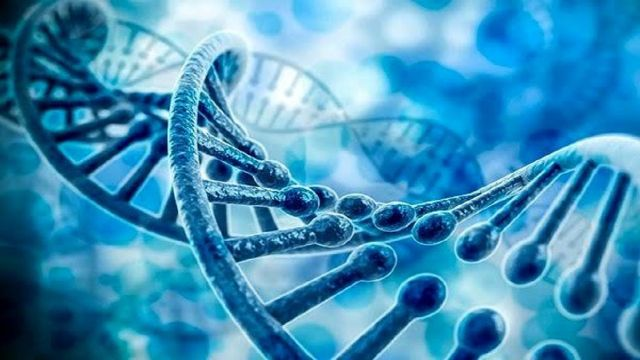 ۱۳ درصد کودکان متولد شده در کشور بیماری ژنتیکی دارند