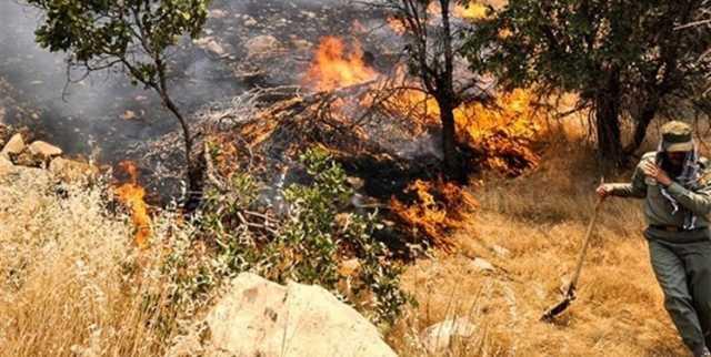 آتشسوزی ارتفاعات جنگلی شهرستانهای مرودشت، ارسنجان و پاسارگاد مهار شد