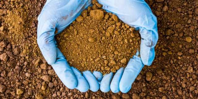 شوری خاک، گریبان گیر زمینهای زراعی خراسان شمالی / جهاد کشاورزی راهکاری دارد؟