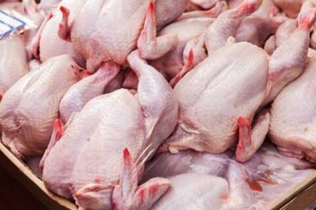 آیا مرغ مانند گوشت قرمز از بسیاری سفرهها حذف میشود؟
