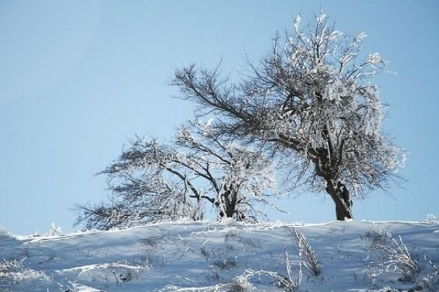 دمای هوای آذربایجان غربی۱۲درجه کاهش می یابد/یخبندان در راه است