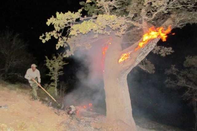 جنگلها و مراتع کوههای «بن لار» پلدختر در آتش سوخت