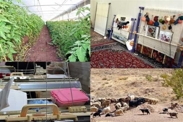 ایجاد شغل برای ۶۰۰۰ نفر با بهرهبرداری از طرحهای اشتغال روستایی