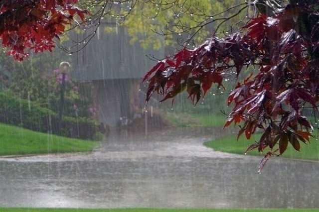 آغاز مجدد بارش ها در کشور/بارندگی در کدام استان ها شدیدتر است
