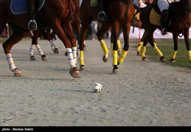 چوگان جام ارتش، گرامیداشت حافظ| فینالیستها مشخص شدند