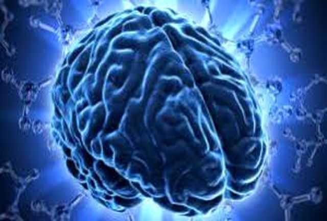 آسیب کاهش حقوق به مغز